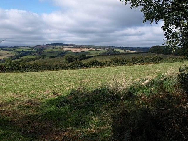 Field beside Summer Cleave Lane