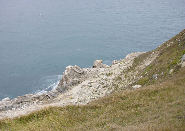 Cliffs, Fossil Forest near Lulworth Cove
