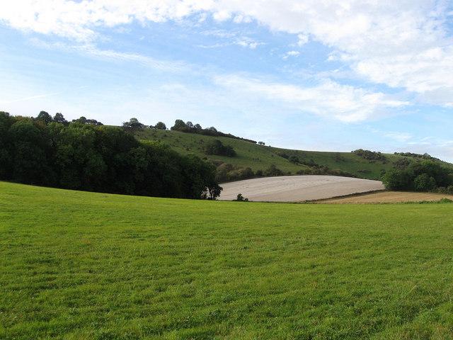 The Kiln Field