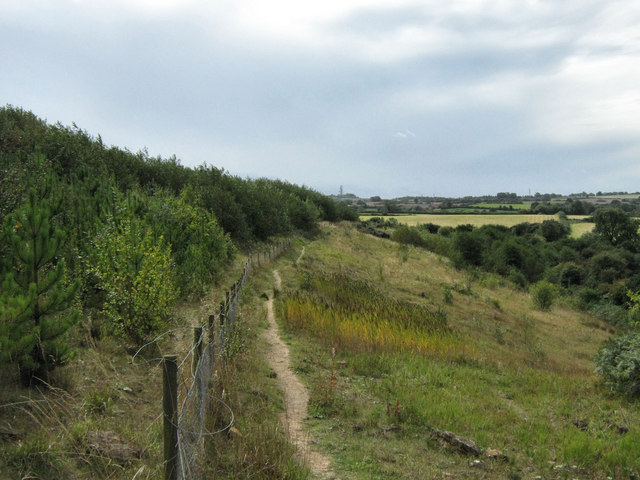 Northern boundary of Silverhill Country Park