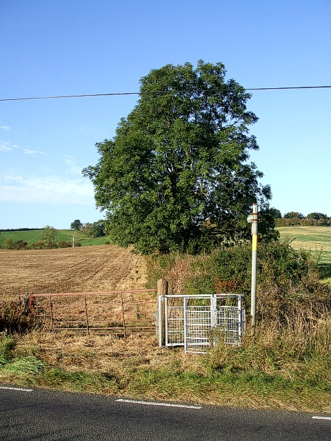 Icknield Way LDP near Toddington