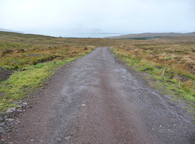 Road in Waternish Forest