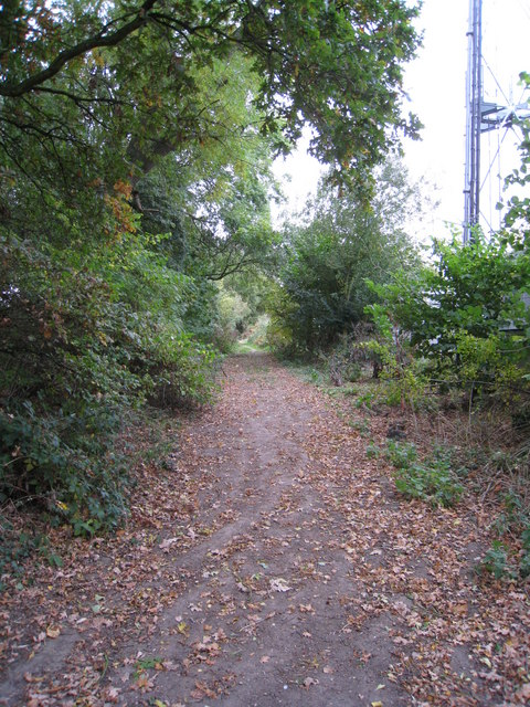 Footpath in Old Basing