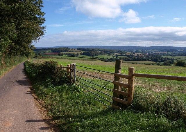 Lane near Horridge Down