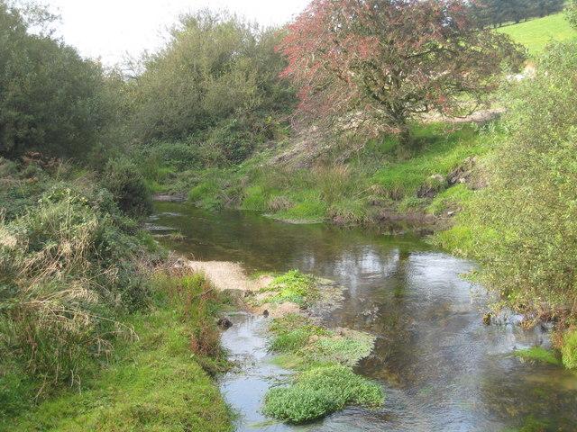 The River Fowey at Trezibbett