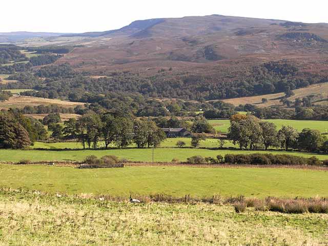 Dunns Farm
