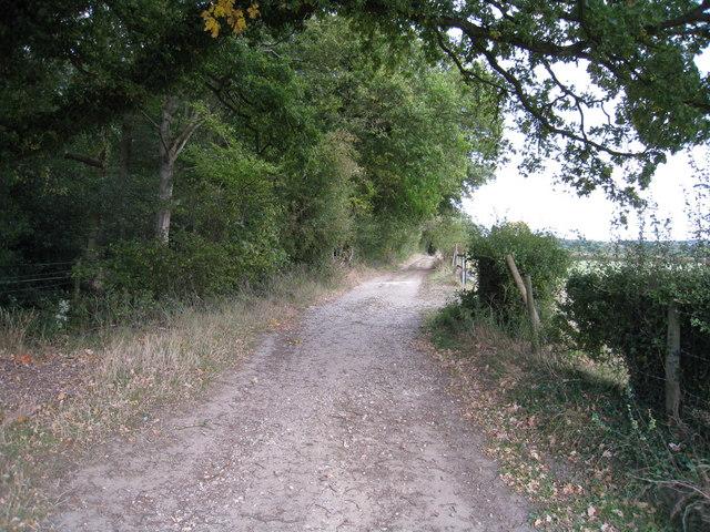 Farm track - close to Hodd's Farm