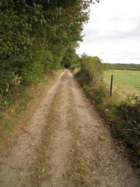 Farm track to Hodd's Farm