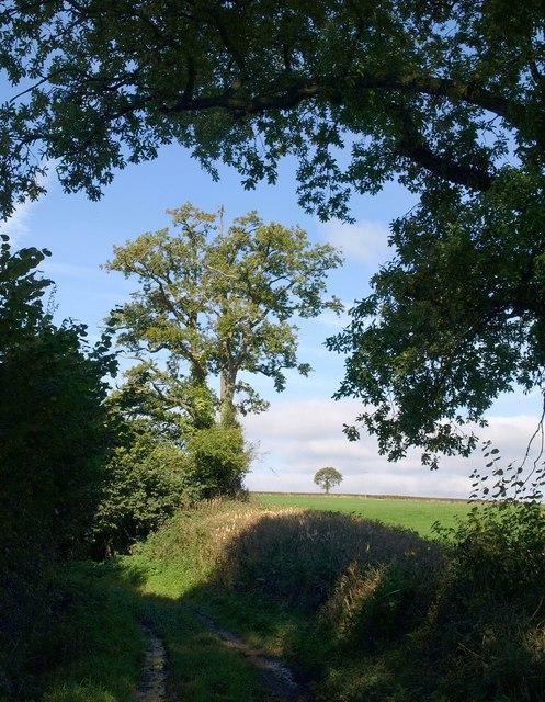 Quarthill Lane