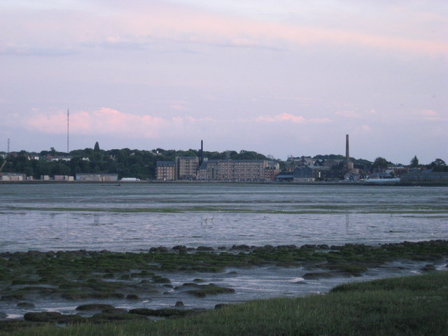 Mud flats with Manningtree in background