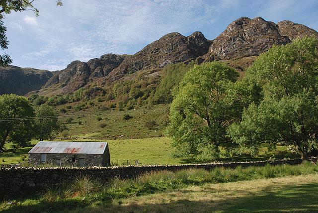 Field in Blaen Cywarch