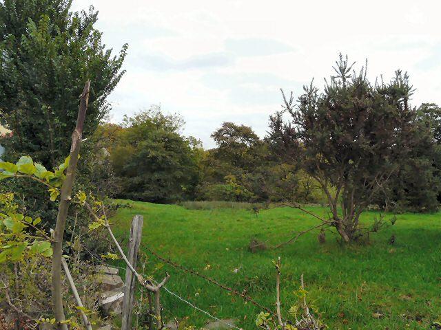 Woodley Fields