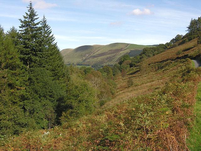 Hillside south of the Afon Dyfi