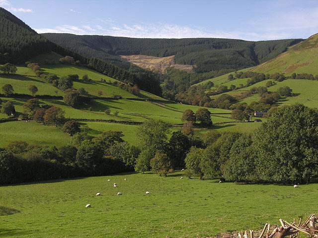 Fields around the Afon Dyfi