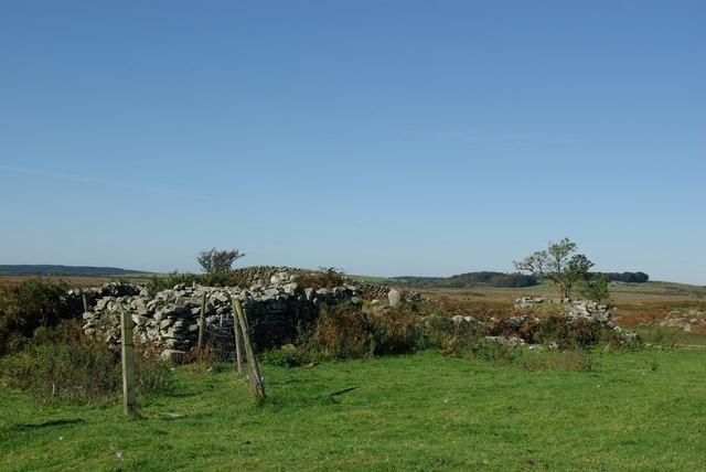 Ruins at Craignagapple Township