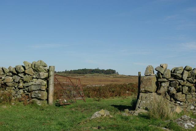View from the enclosure at Craignagapple Township