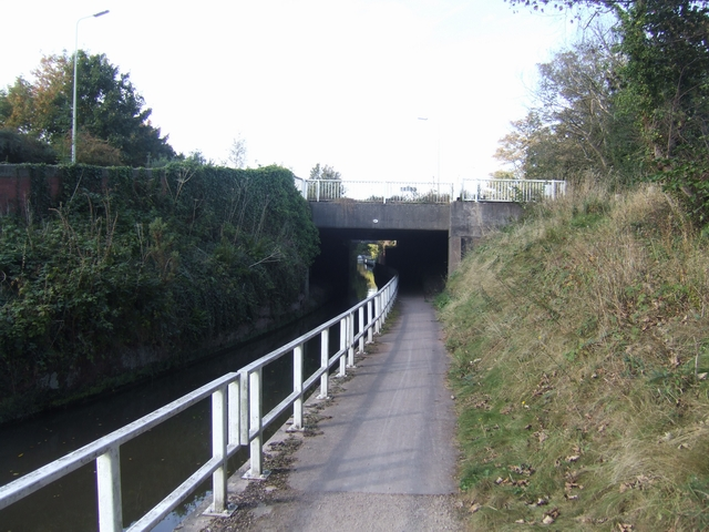 Trent and Mersey Canal - Bridge 61A
