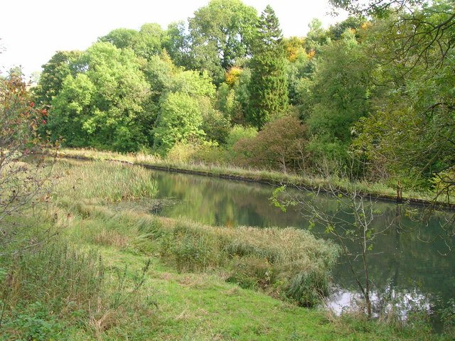 Scalegill Mill pond