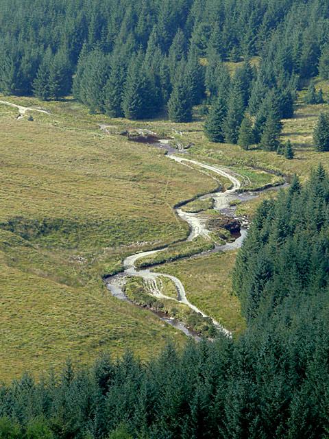 The Afon Tywi near Moel Prysgau, Powys