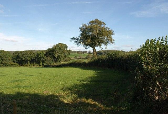 Towards Cobhay Farm