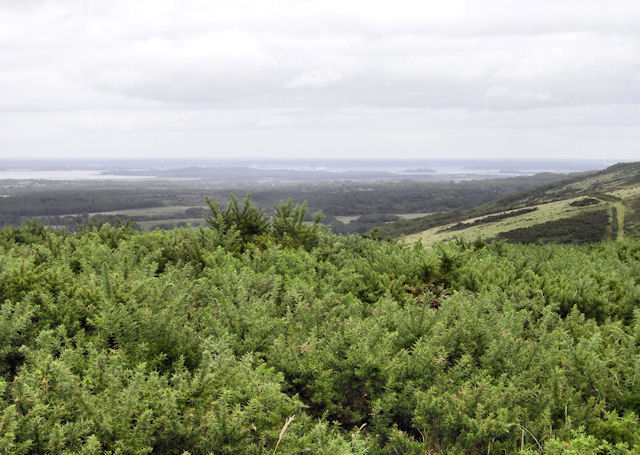Lulworth Range
