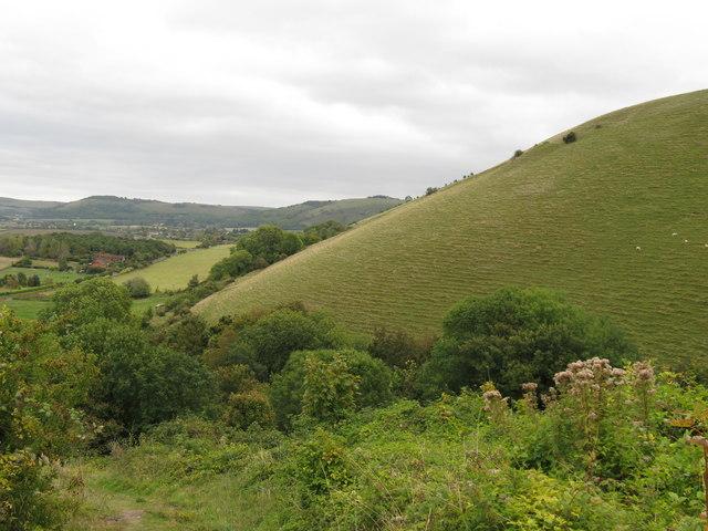 The northern slope of Edburton Hill