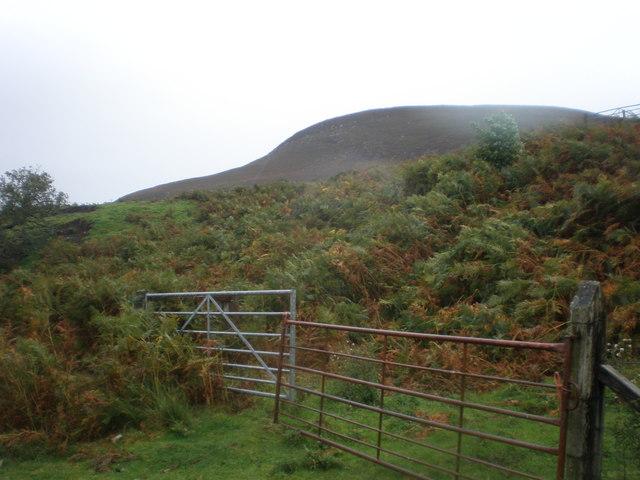 Gates below Little Torboll  on Creag an Amalaidh