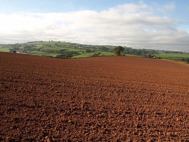 Ploughed field near Cobhay Farm