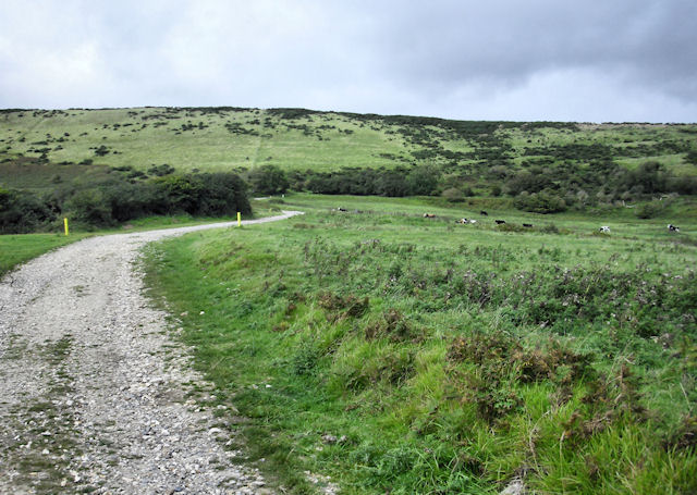Track to Tyneham