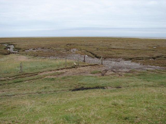 Saltmarsh at Wrangle Flats