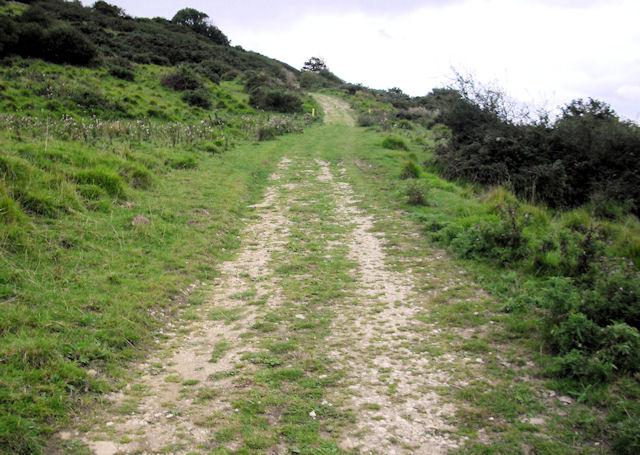 Track, Tyneham Farm