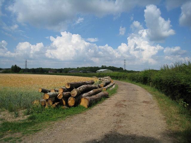 Lumber & farm track