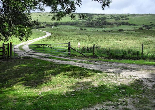 Track to Povington Hill