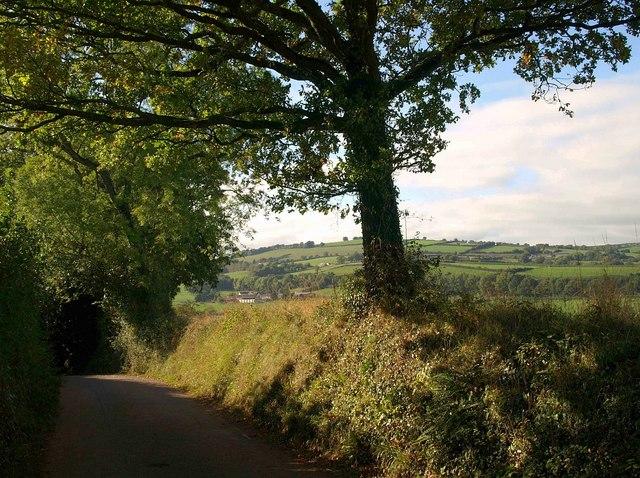 Lane to Bathealton