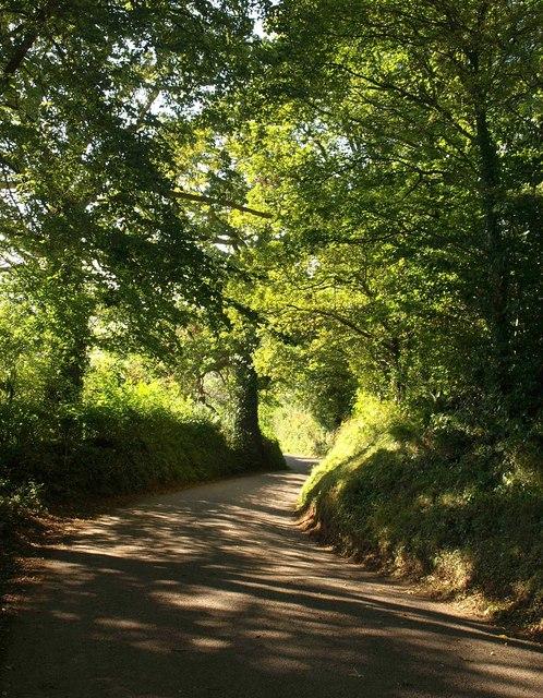 Lane at Blackberry Barn