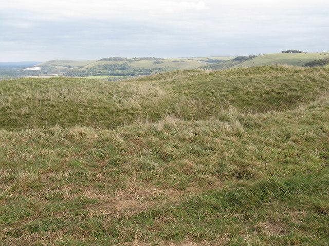 Motte and Bailey at Edburton Hill