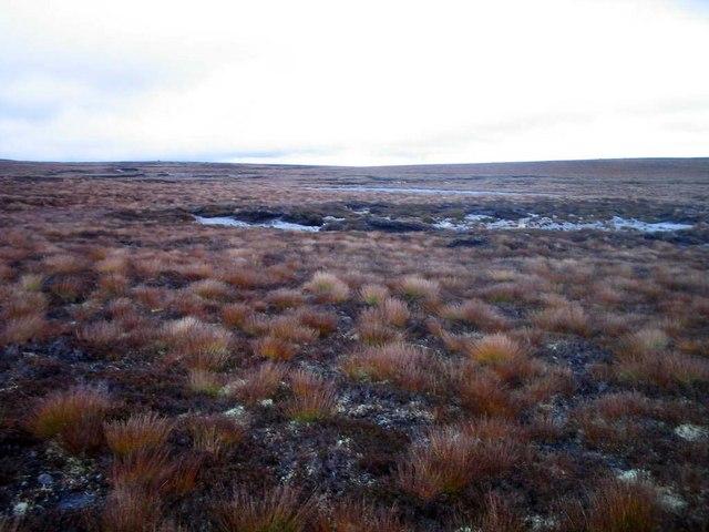 Wild high moorland