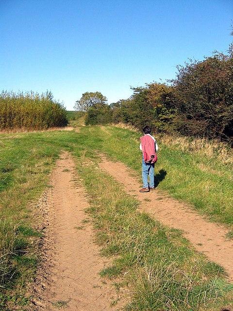 Footpath towards Murton Hall Farm