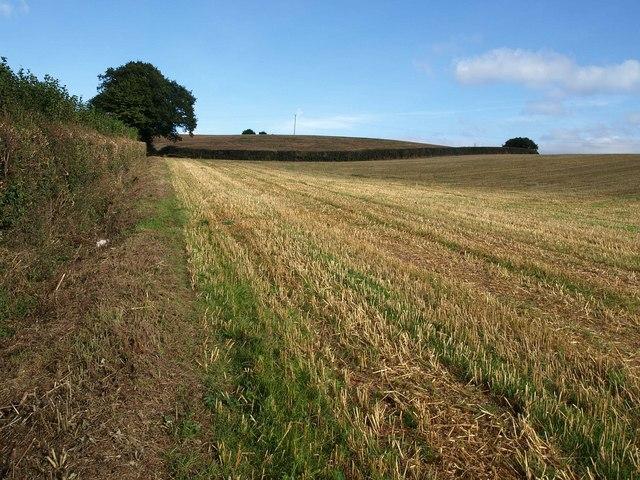 Field south of Bathealton