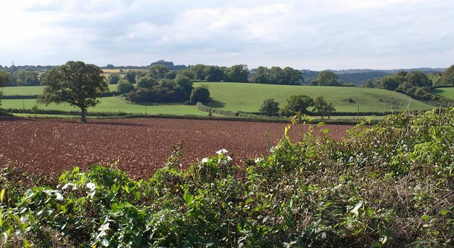 Countryside near Aptor