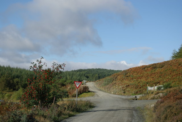 Eastern end of Carrick Forest Drive