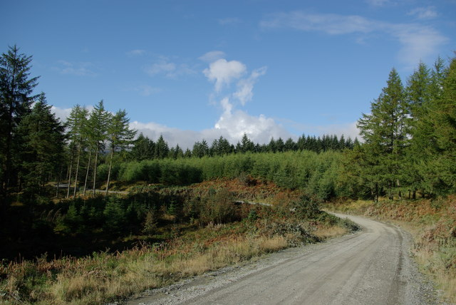Carrick Forest Drive south of Shiel Rig