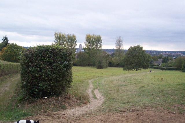 Footpath to Canterbury
