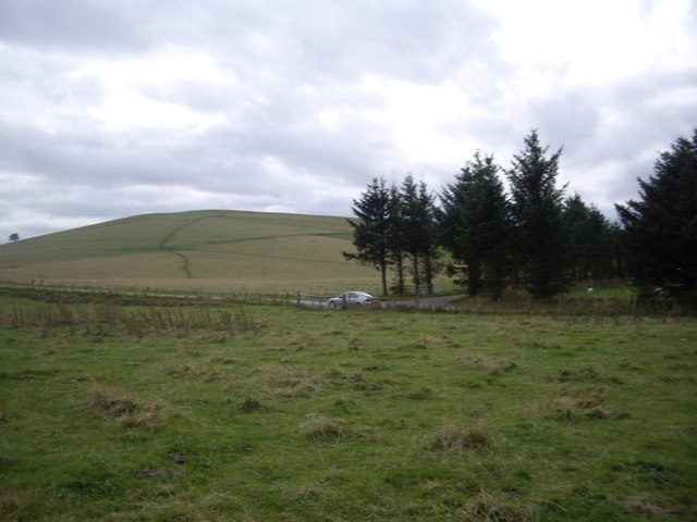 Cow path up Quarry Hill