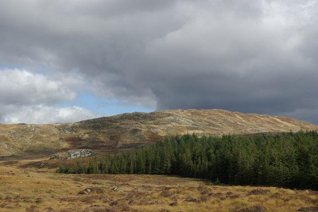 Forestry NE of Ballochling Loch