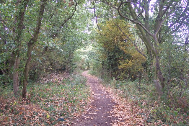 Crab and Winkle Way Cycle Path towards Canterbury