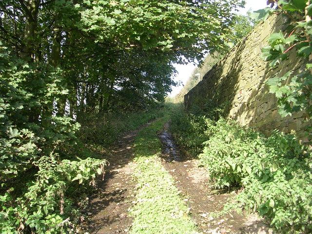 Track - Ploughcroft Lane