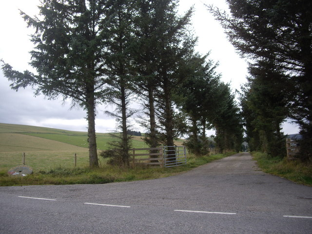 Access road to Mains of Rhynie