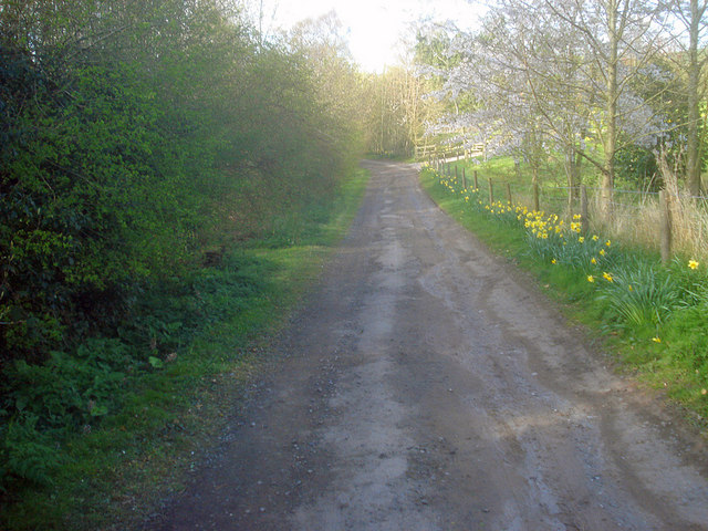 Access track to houses at Great Marston