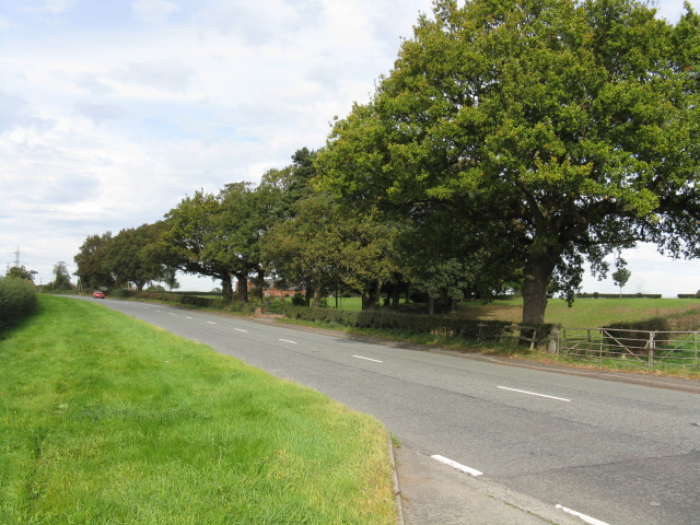 A50 Near Hulme Barns Farm